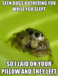 I Actually Like Spiders on Pinterest | Spiders, Wade Wilson and ... via Relatably.com
