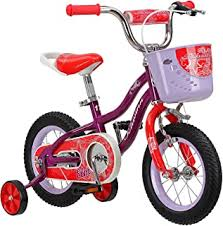 12 Inch - Kids' Bikes / Kids' Bikes & Accessories: Sports ... - Amazon.ca