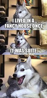puns - Imgflip via Relatably.com