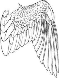 types of bird wings (hummingbird, tern, puffin, eagle, swallow on simon eagle at40c schematic