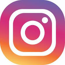 """Résultat de recherche d'images pour """"icone instagram"""""""