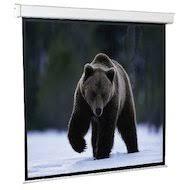 <b>Экраны для проекторов</b> — купить <b>экран для проектора</b> в ...