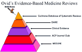 Session     amp     Evidence based Medicine Recap  Systematic Review     Systematic review searching