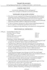 professional resume summary statement examples resume professional    resume examples example of resume for career objective with summary of qualifications and professional experience