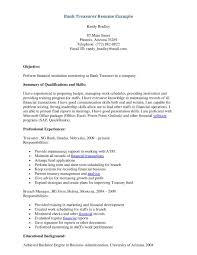 treasurer job description for resume professional resume cover treasurer job description for resume treasurer job description americas job exchange resume bank teller and resume
