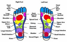 feet diagram photo by mindless searching   photobucketfeet diagram
