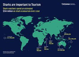 shark fin trade why it should be banned in the united states the fact sheet middot shark ecotourism map