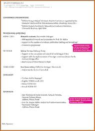cv example job application resume format for job application resume examples of resume format for job application resume examples of