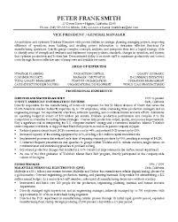 Resume Sample     Vice President resume    Career Resumes