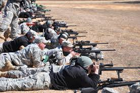 Image result for us army arms pic
