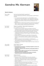 salesperson resume samples   visualcv resume samples databasecommercial real estate salesperson resume samples