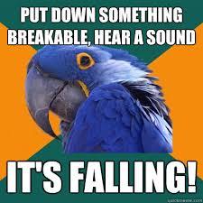 Paranoid Parrot memes | quickmeme via Relatably.com