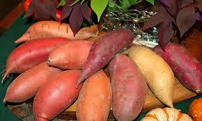 Image result for sweet potatoes images