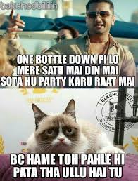 Backchod Billi : Latest Collection Of Backchod Billi Memes, Trolls ... via Relatably.com