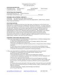ceo job duties doc tk ceo job duties 23 04 2017