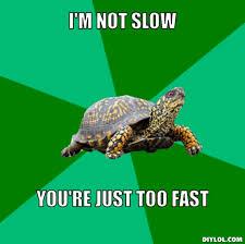 Torrenting Turtle Meme Generator - DIY LOL via Relatably.com