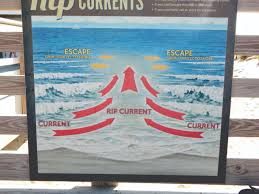 google currents under review what you should know about rip currents