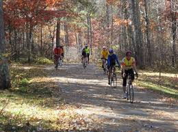 Image result for mississippi headwaters hostel itasca state park
