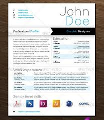 modern and professional resume templates   ginvagraphic designer resume