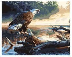 """ВанГогВоМне <b>Картина</b> по номерам """"Орел на <b>дереве</b>"""", 40х50 см ..."""