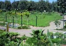 Annaba: Les espaces verts s'offrent  une seconde jeunesse