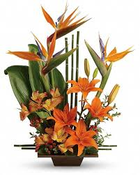 awesome exotic grace send good feng shui someones way with this striking arrangement orange flowers gorgeous green ti leaves and small bamboo like canes awesome small feng shui