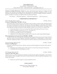 professional resume models   zimku resume   the appetizer professional resume examples themysticwindow