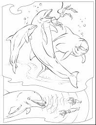 Small Picture great dolphin coloring pages with underwater coloring pages
