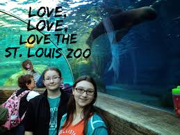 Image result for saint louis zoo