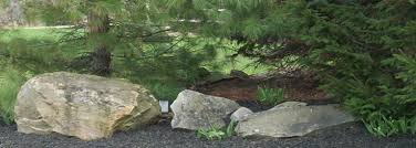 Image result for boulders in landscaping