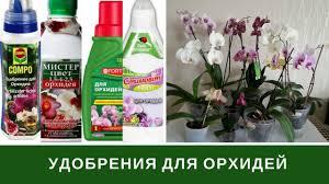 Подкормка Орхидей, <b>Удобрение Орхидей</b>, Витамины, Чесночная ...