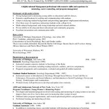 examples of a job resume resume example functional resume format    resume  example of a job resume blank template resume sample job with professional experience resume