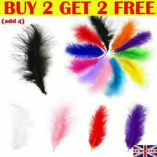 <b>Red</b> Craft Feathers for sale | eBay