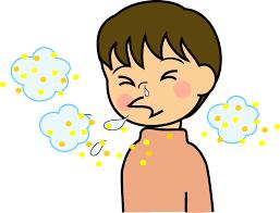 「花粉 イラスト フリー」の画像検索結果