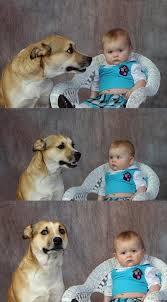 Dad Joke Dog Meme Generator - Imgflip via Relatably.com