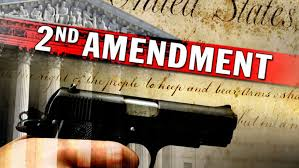 the right to bear arms essaythe right to bear arms essay   can you write my