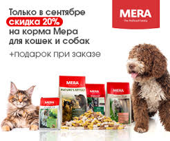 <b>Корм Blitz</b> для <b>собак</b> - отзывы ветеринаров и владельцев животных