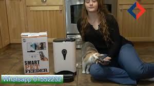 Computer Doctor Lebanon - Smart <b>pet feeder</b> | Facebook