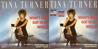Image result for tina turner love got to do