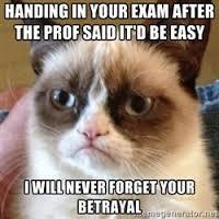 Madcat | Meme Generator via Relatably.com