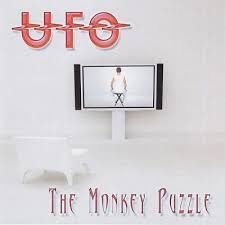 <b>UFO</b> - The <b>Monkey Puzzle</b> :: Rock Report