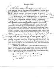 sample of a good essay writing how do you write an essay about example of essay writing