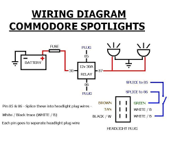 help needed for fog light wiring vt exec just commodores my first question is there is a white wire a blue trace and a purple wire coming from the fog light looms which one is to be earthed