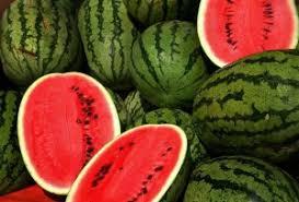 Adalah jenis buah yang segar dan mengandung banyak  air Manfaat Buah Semangka