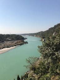 Image result for divine resort rishikesh room view