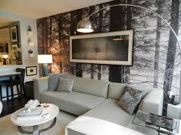 houzz living room nice living room wall mural ideas houzz living room wall murals exterior amazing living room houzz