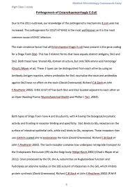 occidental essays