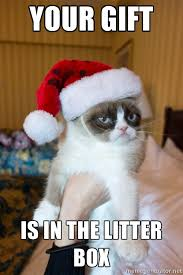 Grumpy cat has a Christmas gift for you | Email Junk via Relatably.com