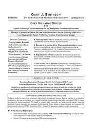 Professional Resume Writers  professional resumes perth   template     Mr  Resume