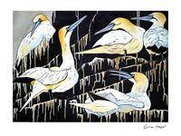260 <b>Bird paintings</b> ideas in 2021 | <b>birds painting</b>, <b>painting</b> & drawing ...